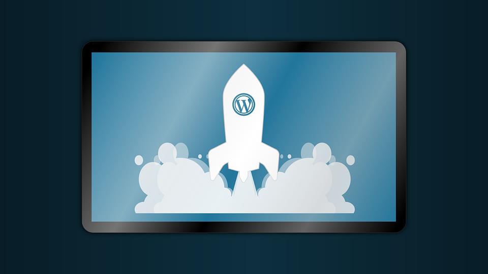 7 kasulikku WordPressi pluginat, mida peaksid teadma